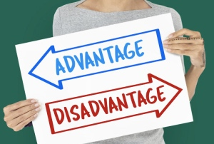 Advantages and disadvantages Of Flat Sharing